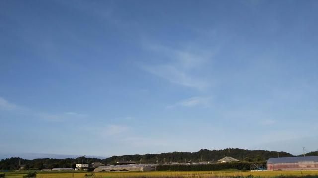 DSC_0123_HORIZON.jpg